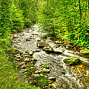 Little River - Smoky Mountains Poster