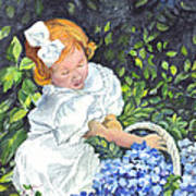 Sophies Hydrangeas Poster