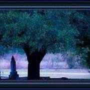 Live Oak Tree In Cemetery Poster