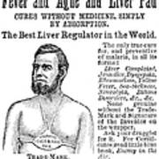 Liver Pad Advertisement Poster