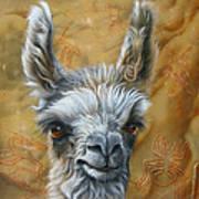 Llama Baby Poster by Jurek Zamoyski