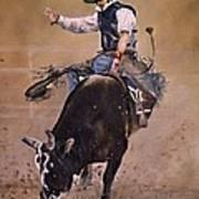 Load Of Bull Poster