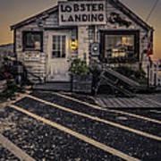 Lobster Landing Shack Restaurant At Sunset Poster