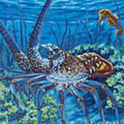 Lobster Season Poster