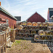 Lobster Traps In North Rustico Poster