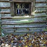 Log Cabin Window And Fall Leaves Poster