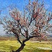 Lone Almond Tree In Bloom Poster