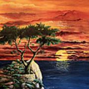 Lone Cypress Poster