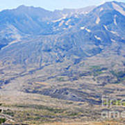 Lone Evergreen - Mount St. Helens 2012 Poster