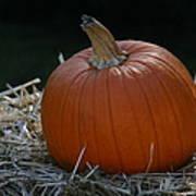 Lone Pumpkin Poster