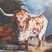 Lone Star Longhorn Poster