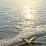 Lone Star On Lovers Key Beach Poster by Olivia Novak