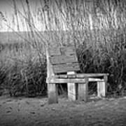 Lonely Beach Bench Poster