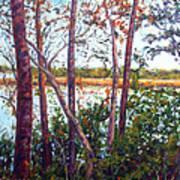Long Lake Poster