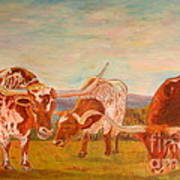Longhorns On The Plateau Poster