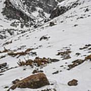 Longs Peak -  Vertical Poster by Aaron Spong