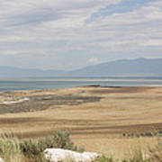 Looking North From Antelope Island Poster