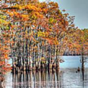 Louisiana Autumn Poster