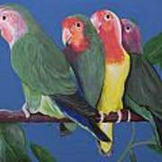 Love Birds Poster by Kathy Weidner