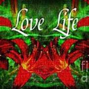Love Life Mirrored Lilies Poster
