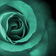 Love's Eternal Teal Green Rose Poster