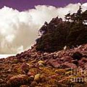 Low Tide Shoreline Closeup With Clouds Poster