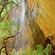 Lower Emerald Pool Waterfall Red Rock Poster