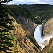 Lower Falls On The Yellowstone River Poster