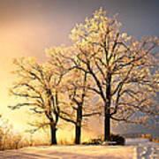 Luminous - Blue Ridge Winter Sunset Poster