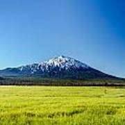 Lush Green Meadow And Mount Bachelor Poster