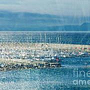 Lyme Regis Under Glass Poster