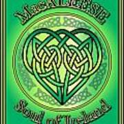 Macaleese Soul Of Ireland Poster