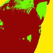 Macaw Pop Art Poster