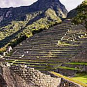 Macchu Picchu - Peru   Poster