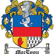 Macevoy Coat Of Arms Meath Ireland Poster