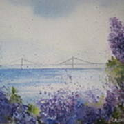 Mackinac Island Lilacs Poster