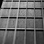 Macro Guitar Strings Poster