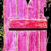 Magenta Painted Door In Garden  Poster