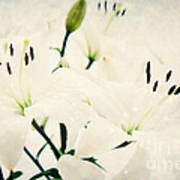 Magic Flowers Poster