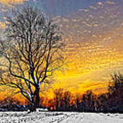 Magical Winter Sunset Poster