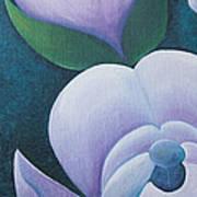 Magnificent Magnolia Buds Vertical Pink Flower Bud Closeup Textu Poster by Christina Rahm