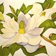 Magnolia Cluster Poster