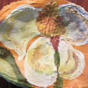 Magnolia Orioles Poster by Debbie Nester