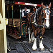 Main Street Horse And Trolley Poster