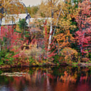 Maine Barn Through The Trees Poster by Jeff Folger
