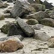 Maine Beach Rocks Poster