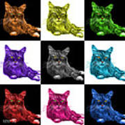 Maine Coon Cat - 3926 - V1 - M Poster