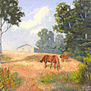 Mainely Grazing Poster