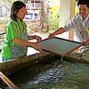 Making Paper Using Mulberry Tree Pulp At Boring Paper Factory In Chiand Mai-thailand Poster