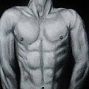 Male Nude Study Poster
